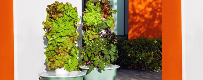 Not DIY, But If You Want To Take Vertical Gardening To Another Level (both  In Cost And Results), You Could Try A Garden Tower. There Are Both  Aquaponic ...