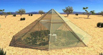 This Innovative New Greenhouse Makes It Possible To Grow Crops Even In The Desert