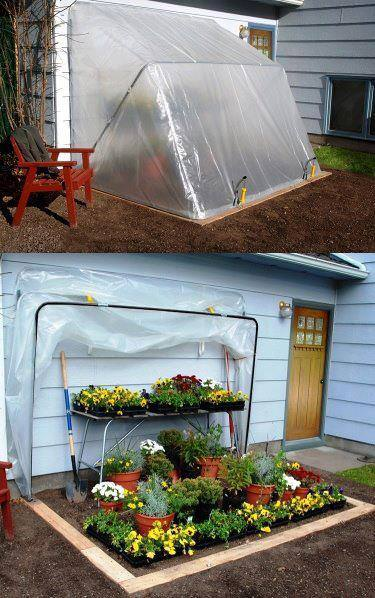 Fold down greenhouse