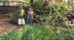 Permaculture Paradise: Tour of Val and Eli's Garden!
