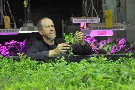 John Edel vertical gardening