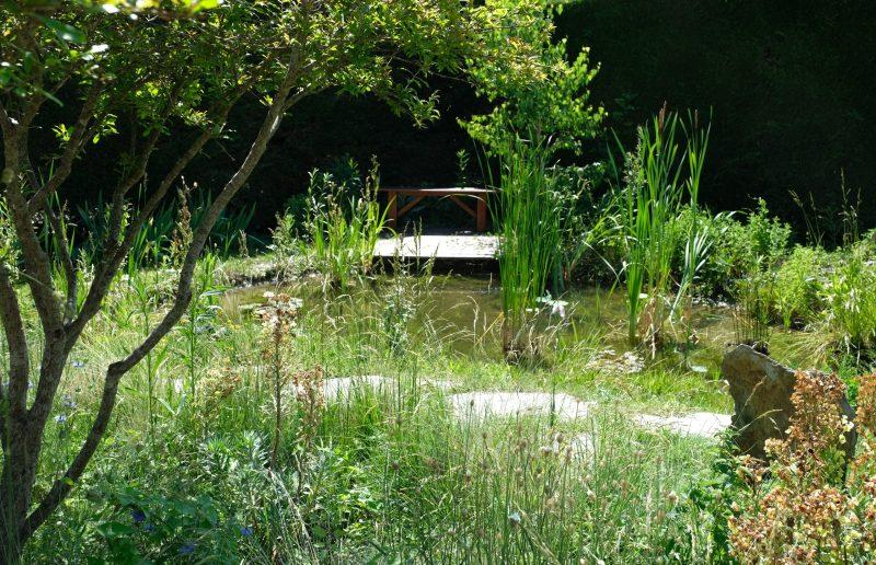 Walden Paysage Varces Jardin Bassin