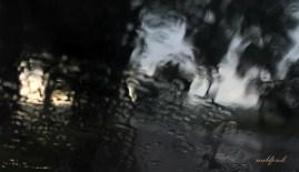 rain002