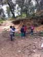 Al bosc