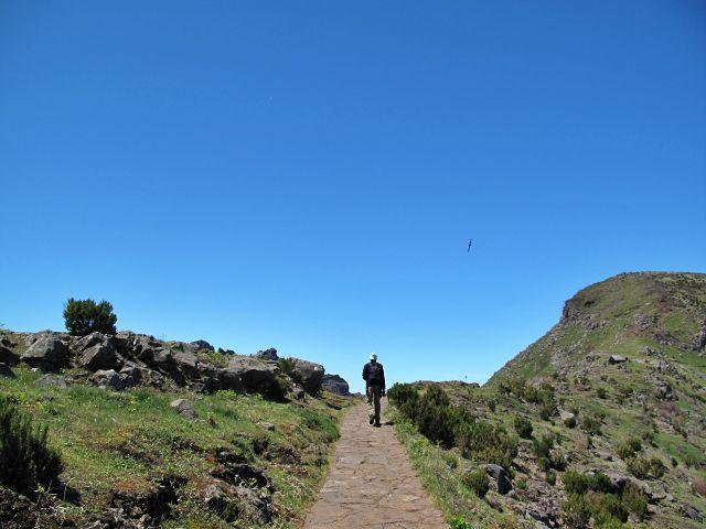 Wanderung zum Pico Ruivo | Waldspaziergang.org