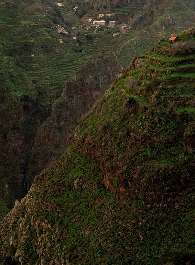 Bergiges Madeira   Waldspaziergang.org