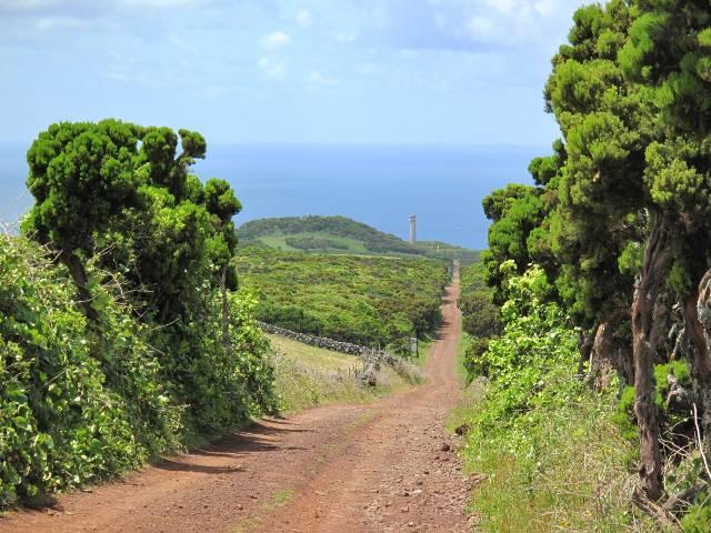 Azoren Ponta dos Rosais | Waldspaziergang.org