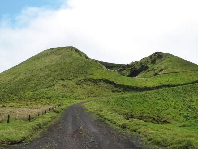 Pico Morro Pelado | Waldspaziergang.org
