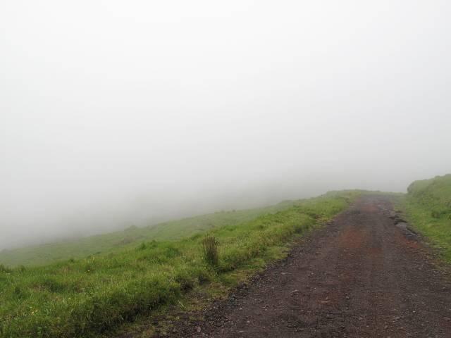 Rückweg Pico da Esperanca   Waldspaziergang.org