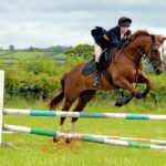 Planning for equestrian centre in Robeston Wathen expected to be approved
