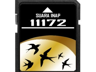 download suara inap 11172