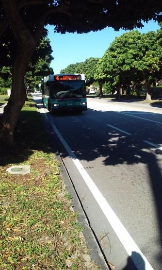 Bus service - Forest Hill Blvd.