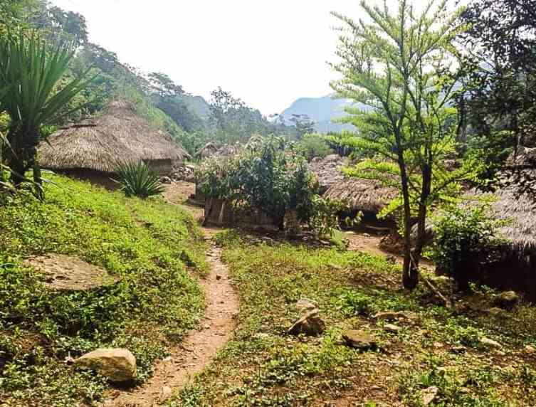 indigenous homes on the lost city trek colombia