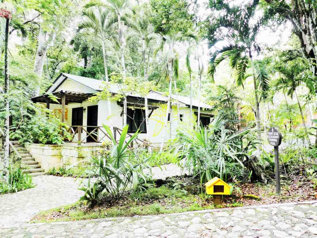 a cabin at jungle lodge tikal
