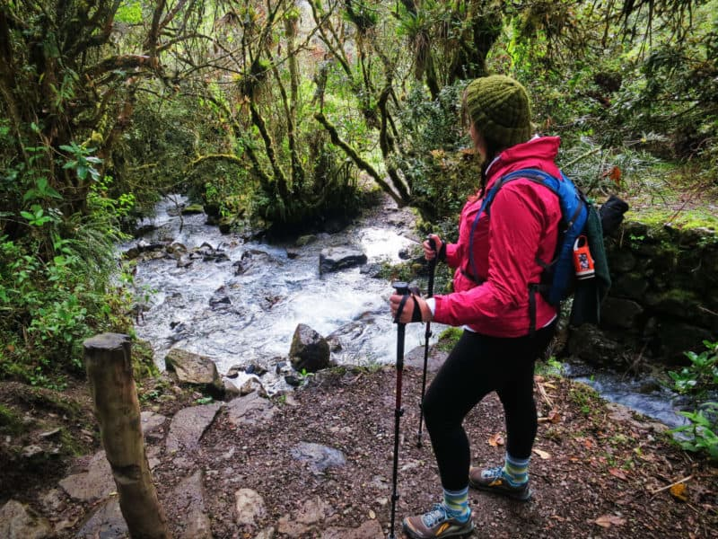 hiking in the valle de cocora in colombia