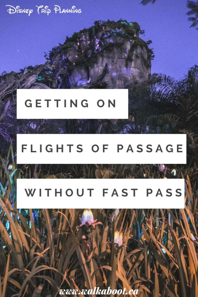 getting on flights of passage without a fast pass