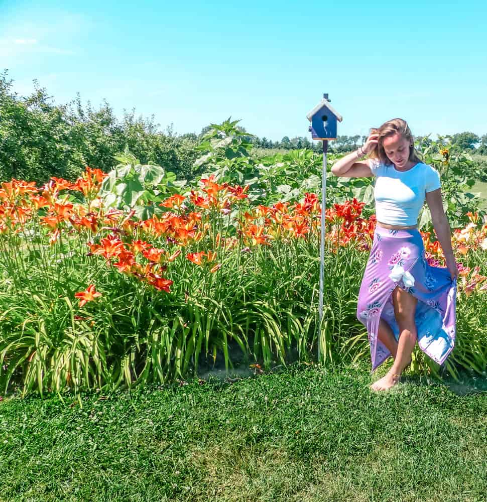standing in front of the apply his lavender lily patch in ontario