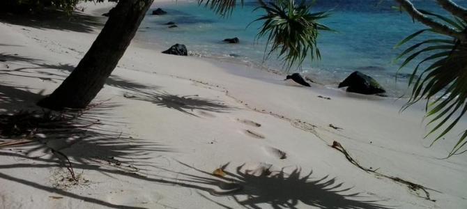 Gambier Inseln – Moorea 31.05 bis 06.08.2015