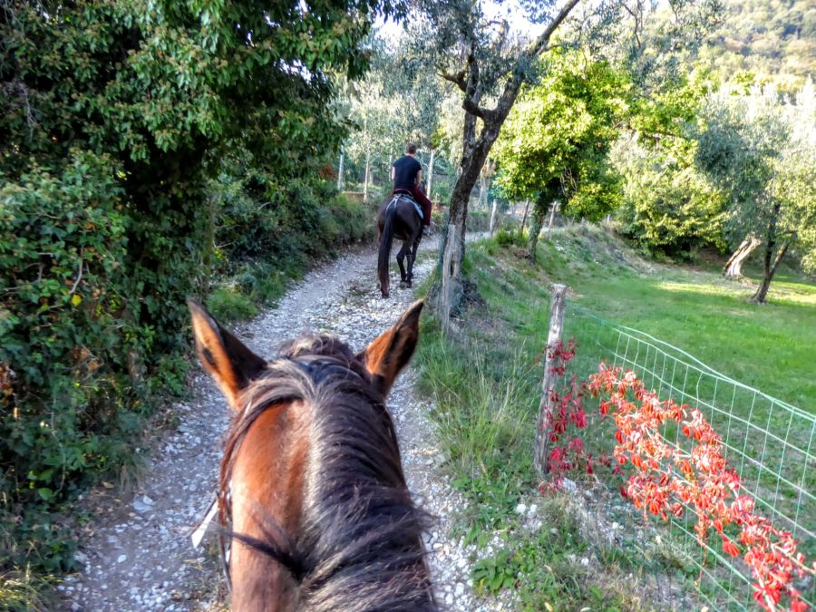 Horsing Riding in Lake Garda