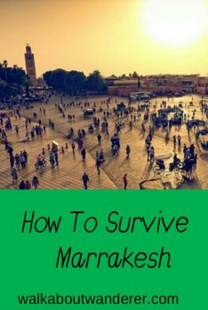 My top tips on how to survive Marrakesh. Written by Walkabout Wanderer. Keywords: hints, tips safety Marrakesh, Morocco, Africa