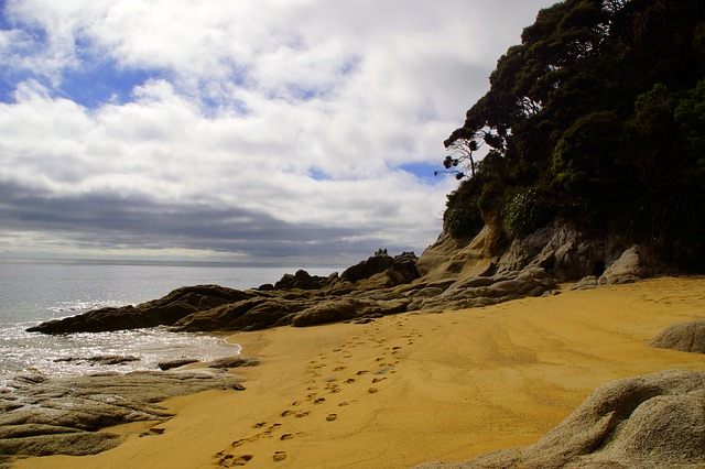 Abel Tasman free things to do New Zealand's South Island tourist guide