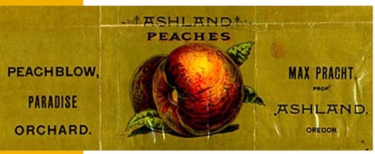 Pracht Street: A Legacy of Premium Peaches