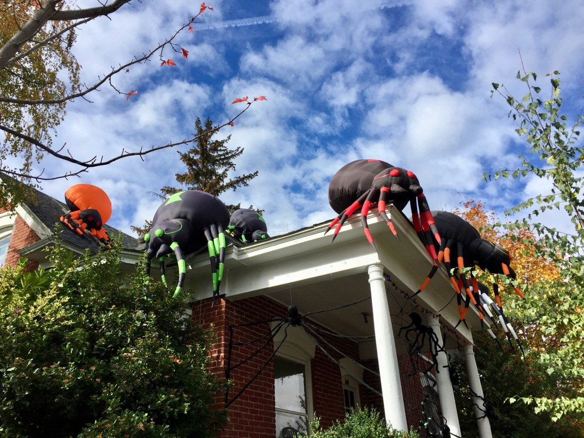 Ashland Halloween Decorations