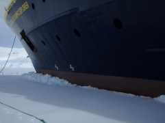 Lodged in the fast ice of Wilmelmina Bay