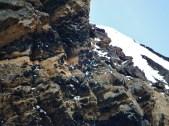 Snow Petrel nesting cliffs on Brown Bluff
