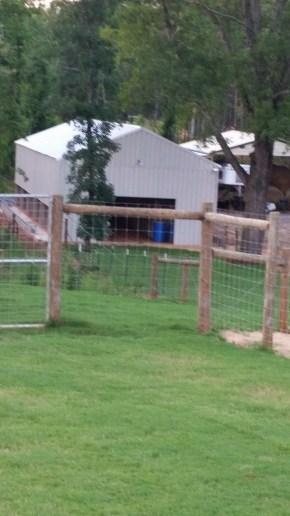 Training kennel