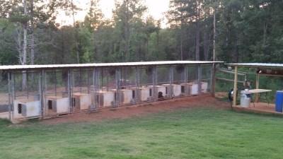 Backyard Kennels