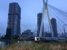 Tsukuda Oohashi Bridge