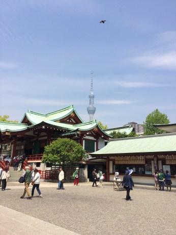 Tokyo Sky Tree and the Shrine