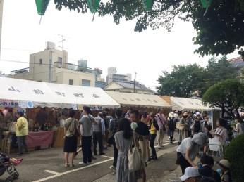 Hydrangea Festival in Hakusan Jinja Shrine