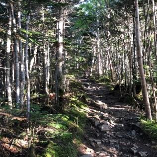 A trail of Otarumi Toge Hill