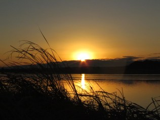 Sunrise in Teganuma Lake
