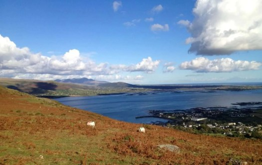 View from Sliabh Foye accross Carlingford Lough of the Mourne Mountains.