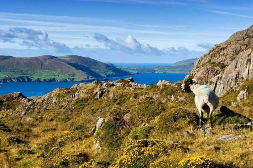 Kerry Way Coastline on Ireland's Wild Atlantic Way, Walking Tour