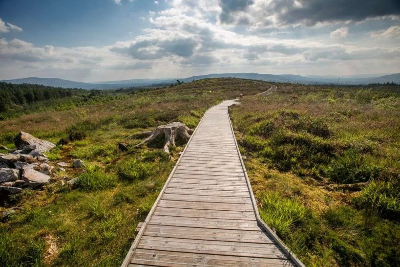 Hiking trails and walks at Cavan Burren Park, Ireland