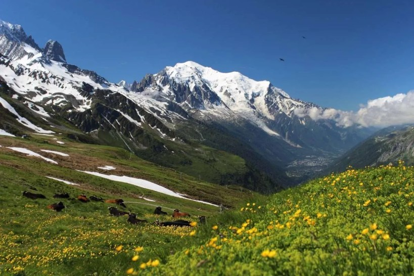 Hiking trail Tour Du Mont Blanc (TMB)