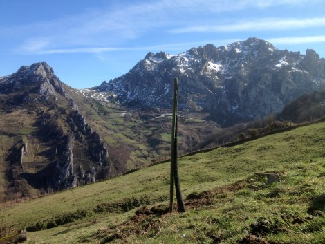Peña Mea Asturias. The first apple tree planted at Pomar.