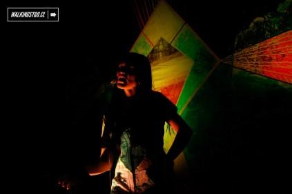 61-artshow-3d-aoraqui-arte-usable-100en1dia-santiago-19-11-2016-walkingstgo-16