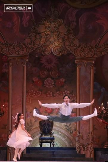 Cascanueces 2015 en el Teatro Municipal de Santiago de Chile - 113