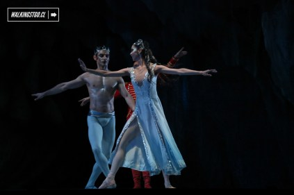 Cascanueces 2015 en el Teatro Municipal de Santiago de Chile - 48