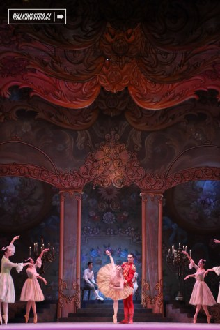 Cascanueces 2015 en el Teatro Municipal de Santiago de Chile - 79