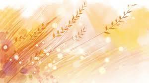 harvest-web