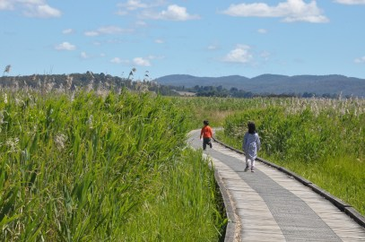 Tamar Island Boardwalk, Launceston
