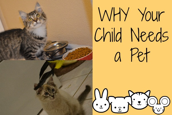 Why Your Child Needs a Pet