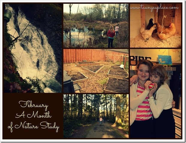 2013 Year in Review: February 2013 - A Month of Nature Study