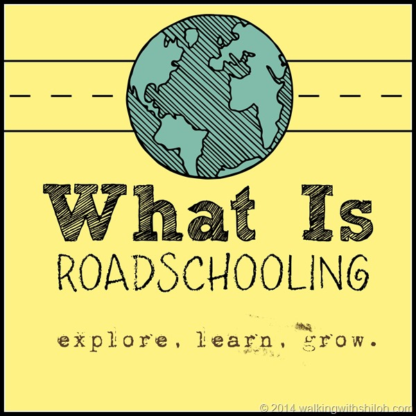 What is Road Schooling?